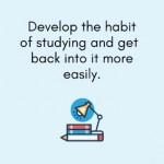 study Spanish habit
